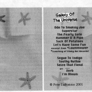 Galaxy Of The Universe by Pete LaBonne